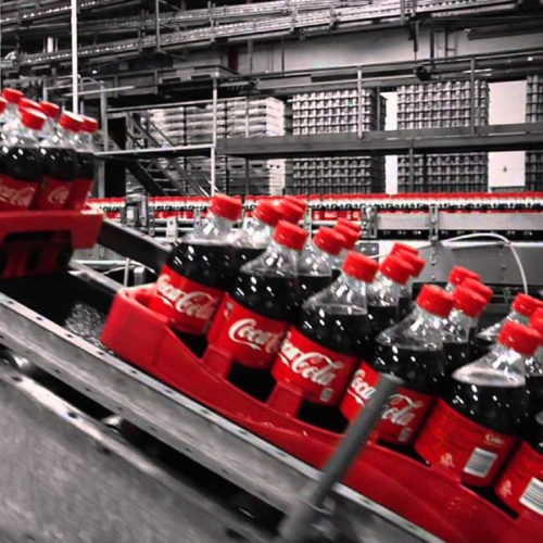 Coca Cola Amatil Executive Decision Making Program
