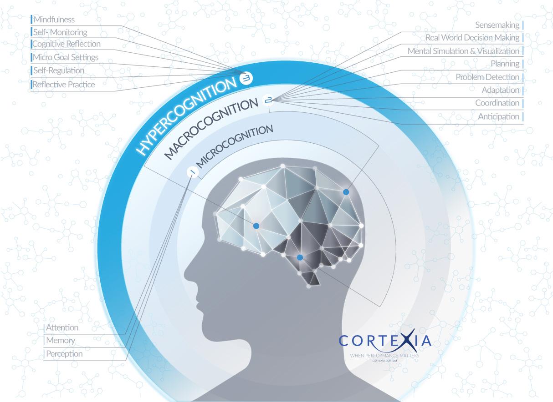Human Factors Consultancy Australia CORTEXIA